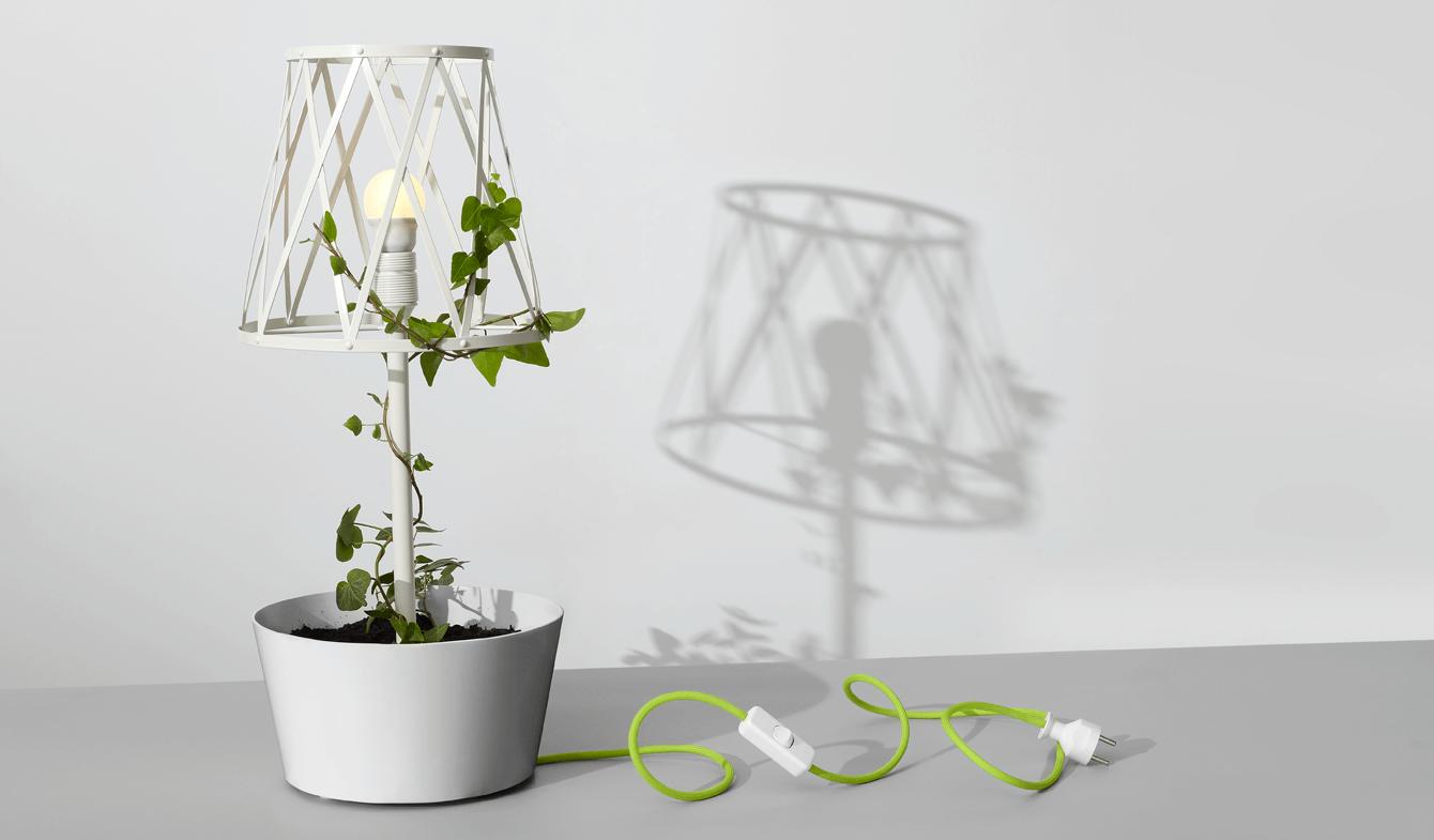 Zuzanna Malinowska_Green Lamp_4